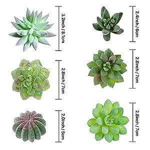TIMEYARD 12 Pack Artificial Succulents, Faux Succulent Plants Fake Succulents Unpotted in Different Kinds, Echeveria Agave Arrangement Realistic Home décor 4