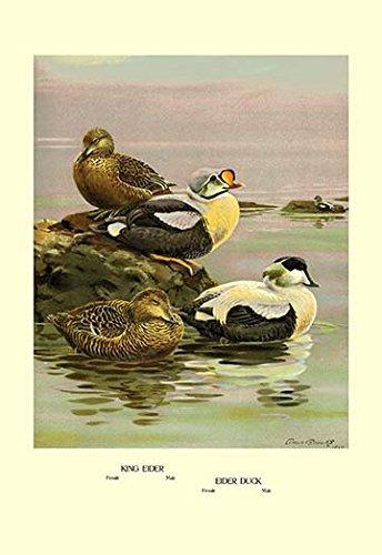 Fine Gabardine - Meet the Spring Breezes in Wrinkle Resistant Sheen Gabardine Toppers Fine Art Canvas Print (20