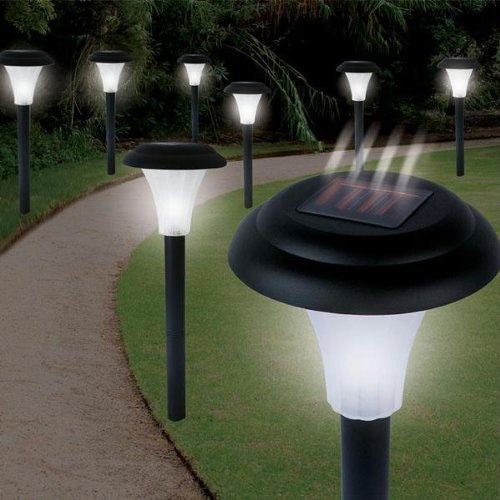 Solar Accent Lighting Set Of 8 in US - 3