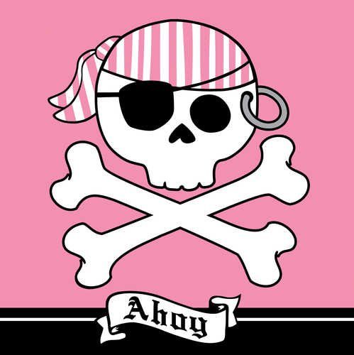 Creative Converting Pirate Parrty Ahoy Luncheon Napkins, 16 Count