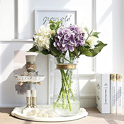 Cyl Home Vases Cylinder Clear Hammered Glass Flower Arrangement Vase Brass Gold Band Decor Dining Table Centerpieces Gifts For Wedding Housewarming Party 11 8 H X 5 4 D Amazon Sg Home