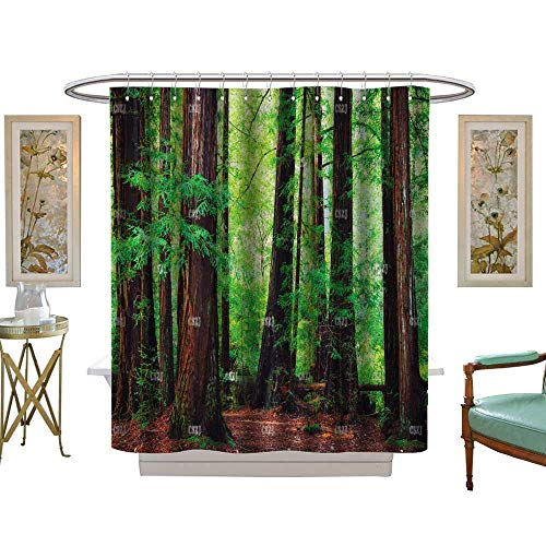 (luvoluxhome Shower Curtains 3D Digital Printing Stock Photo Redwood Trees in Forest Northwest rain Forest W72 x L96 Bathroom Decor Set with Hooks)