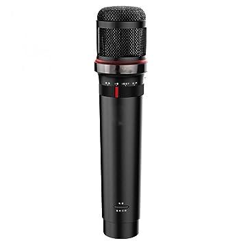 LIUGUANJIANG Type-c - Micrófono con micrófono y Tarjeta de ...