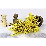 JAKY-Global-Babys-Breath-Fabric-Cloth-Artificial-Flowers-4-Bundle-European-Fake-Silk-Plants-Decor-Wedding-Party-Decoration-Bouquets-Real-Touch-DIY-Home-GardenYellow