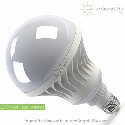 ecoBright LED Light Bulb