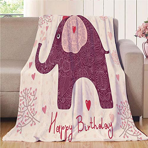 Blanket Comfort Warmth Soft Cozy Air Conditioning Fleece Blanket Perfect for Couch Sofa Or Bed,Kids Birthday,Asian Paisley Motif Image with Purple Color Elephant Party Cone Hearts and Flags Decorative