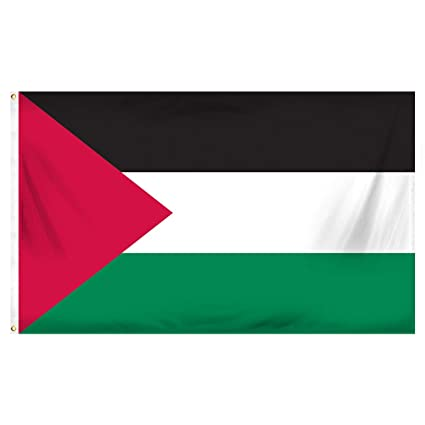 amazon com flag of palestine 3x5 ft flags 3 x 5 palestinian new