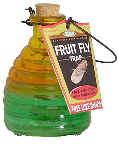 Springstar Glass Fruit Fly Trap; Kitchen Insect Bug Killer; New