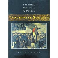 The Industrial Society (Visual Culture of Wales)