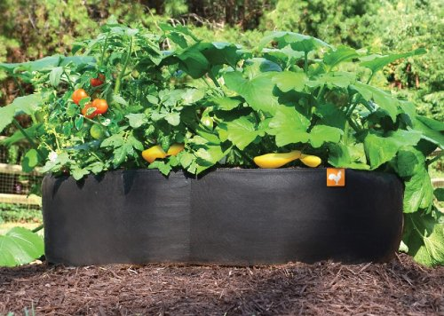 Victory 8 Fabric Raised Garden Bed, 2x2 Feet by Victory 8 Garden