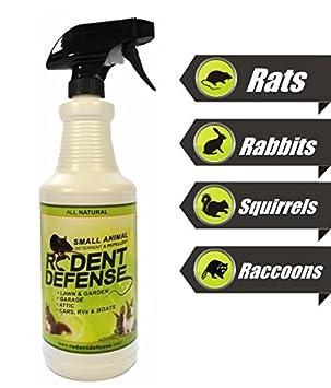 Nagerbekämpfung - kleines Tier Abschreckung und Abwehrspray 0,9L ...