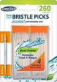 Dentek Deep Clean Bristle Picks in Mint, 260 Count
