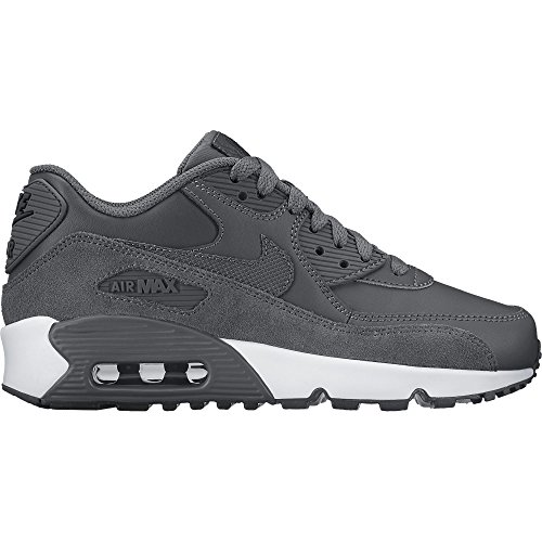 Nike Boy's Air Max 90 Leather (GS) Shoe Dark Grey/Dark Grey-Black-White (Black Grey Air)