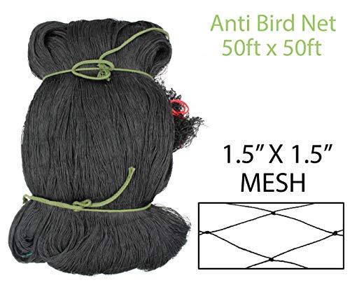 Amaranth Nets 50