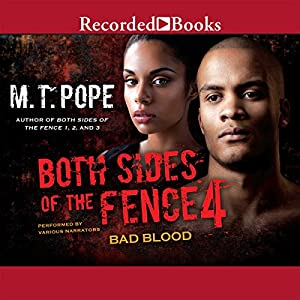 Both Sides of the Fence 4 Audiobook
