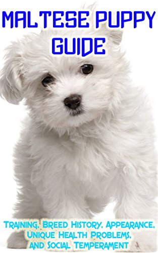 Maltese Puppy Training Guide: Training, Breed History, Appearance, Unique Health Problems, and Social Temperament