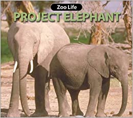 project elephant success