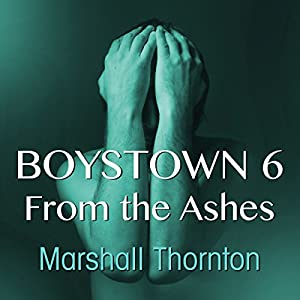 Boystown 6: From The Ashes Audiobook