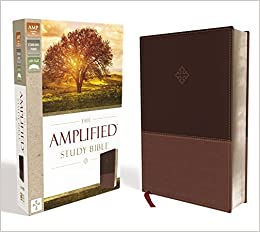 The Amplified Study Bible, Leathersoft, Brown [Large Print