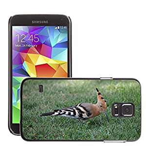 Etui Housse Coque de Protection Cover Rigide pour // M00134725 Abubilla pájaro del verano de la // Samsung Galaxy S5 S V SV i9600 (Not Fits S5 ACTIVE)
