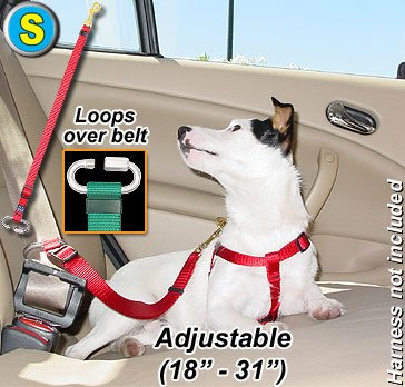Seat Belt Tethers - Small - Step 3 Grey - Tether your pet in