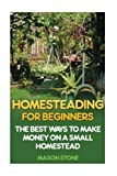 Homesteading For Beginners: The Best Ways To Make Money On A Small Homestead