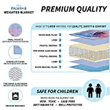 Franco Bedding Super Soft Plush Kids Weighted