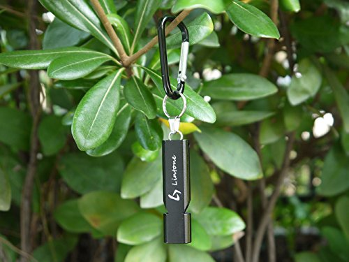 Lintone Outdoor Keychain Emergency Survival Whistle with Key Chain Ring and EVA CASE and Necklace Lanyard for Camping Hiking Climbing Signal