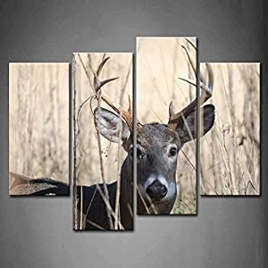 First Wall Art   4 Panel Wall Art Whitetail Deer Buck Moving Through Bush  Painting Pictures Print On Canvas Animal The Picture For Home Modern  Decoration ...