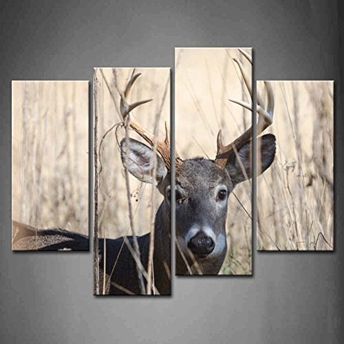 First Wall Art Whitetail Decoration