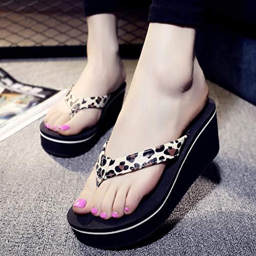 Sandales Chaussons Sandales Chaussons Chaussons Chaussons Chaussons Sandales Sandales Chaussons Chaussons Sandales Chaussons Sandales Sandales wfqYIaqxS