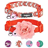 Blueberry Pet 4 Designs Pack of 2 Cat Collars, The Power of All in One Perfect Orange Adjustable Breakaway Cat Collar with Bell & Detachable Flower, Neck 9''-13''
