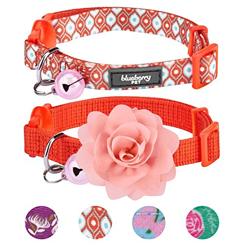Blueberry Pet 4 Designs Pack of 2 Cat Collars, The Power of All in One Perfect Orange Adjustable Breakaway Cat Collar with Bell & Detachable Flower, Neck 9''-13'' by Blueberry Pet