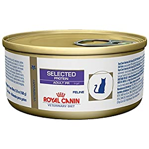 Royal Canin Hypoallergenic Cat Food Rabbit