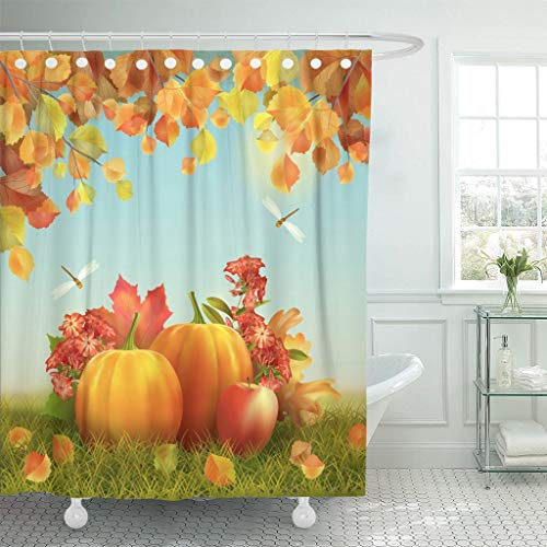 Emvency Fabric Shower Curtain Curtains with Hooks Colorful Fall Autumn Thanksgiving with Harvest Pumpkins Fallen Leaves Tree Branches Dragonfly Field Scene 60X72 Waterproof Decorative Bathroom