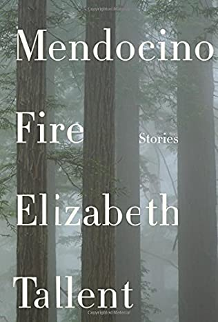 book cover of Mendocino Fire