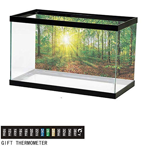 bybyhome Fish Tank Backdrop Forest,Evening Meadow Greenland,Aquarium Background,24