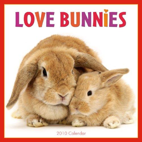 Love Bunnies 2010 Wall Calendar (Calendar)