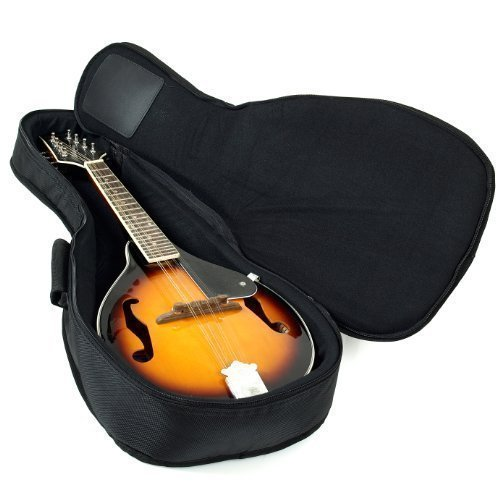 Hola! Heavy Duty A & F Style Mandolin Gig Bag (Soft Case) with 15mm Padding, Black (Bag Soft Case)