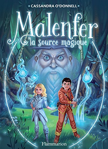 Malenfer - Terres de magie (Tome 2) - La source magique (French Edition)