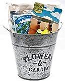 Flower Planter Bundle with Hanging Pot Decoration, Potting Soil, Forget Me Not Flower Seeds