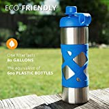 Aquasana Active 17 oz. Clean Water Bottle with