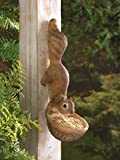MD-group Charming Squirrel Birdfeeder adorable outdoor mounts charming wooden running tree sculpture POLYRESIN STONE 4.5'' x 7'' x 13''
