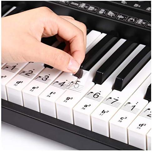 Teclado de piano partituras para 32 | 49 54 61 | 88 teclas, pegatinas transparentes de piano para teclados Piano School Pegatinas de piano para teclas ...