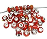 Ten (10) Pack of Assorted (Red) Glass Lampwork Charm Beads for Snake Chain Charm Bracelets