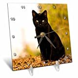 3dRose LLC Black Cat Desk Clock, 6 by 6-Inch Review