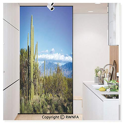 Removable Static Decorative Privacy Window Films Wide View of The Tucson Countryside with Cacti Rural Wild Landscape Arizona Phoenix for Glass (17.7In. by 78.7In),Green -