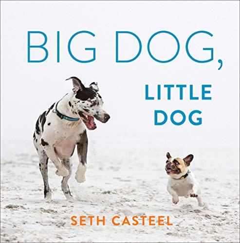 Book Cover: Big Dog, Little Dog