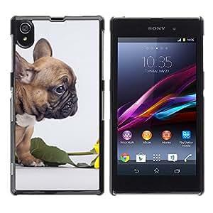 TopCaseStore / la caja del caucho duro de la cubierta de protección de la piel - Pug Valentines Flower Rose Puppy Small - Sony Xperia Z1 L39 C6902 C6903 C6906 C6916 C6943