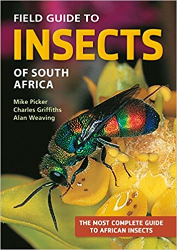 Field guide to insects of southern africa | buy online in south.